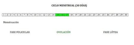 Dias Fertiles Mujer Calendario.Dias Fertiles Para Quedar Embarazada