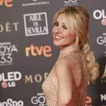 Premios Goya 2019: Los 7 mejores recogidos vistos en la alfombra roja