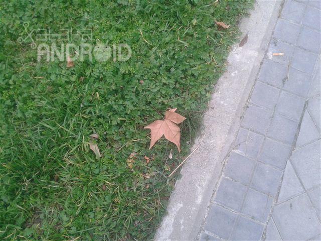 Foto de Fotos tomadas por el Samsung Galaxy SIII Mini (28/33)