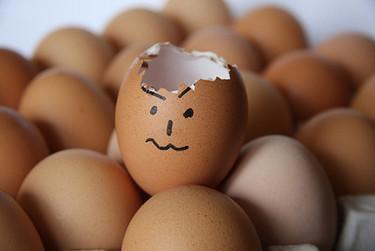 Alimentación complementaria: el huevo