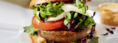 Green Cuisine Classic Burger Findus