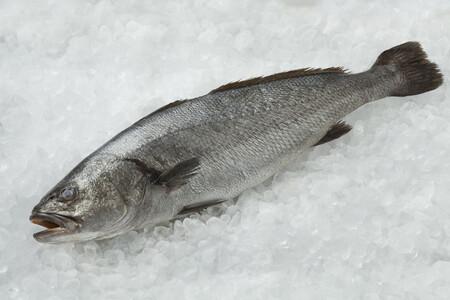 Corvina, un exquisito pescado blanco de temporada para disfrutar todo el año: cómo prepararla y cinco recetas para disfrutarla