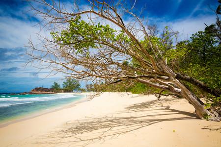 Seychelles Dreams 1 8180142627