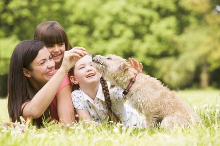 Preguntas que tendrás que hacerte antes de tener mascotas en casa