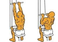Guía para principiantes (XXXIX): Polea al pecho
