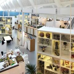 espacios-para-trabajar-las-renovadas-oficinas-de-lego