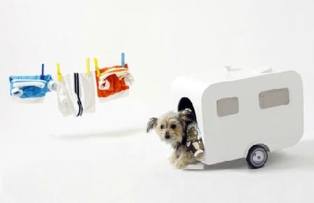 Cinco consejos decorativos para casas con mascota
