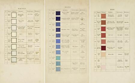 51c28eafaf El color antes de Pantone  la guía que utilizó Darwin para nombrar los tonos  de la naturaleza