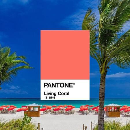 """¡Pantone ha hablado! Y ahora 2019 será de color """"Living Coral"""""""