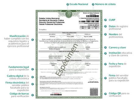 Cedula Profesional Electronica Mexico Ejemplo