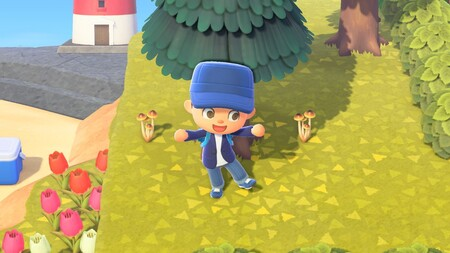 Animal Crossing New Horizons Guia Champinones 02