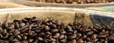 ¿Cuánto tiempo tardamos en generar tolerancia a la cafeína? Te explicamos cómo tomarla para sacarle el máximo beneficio