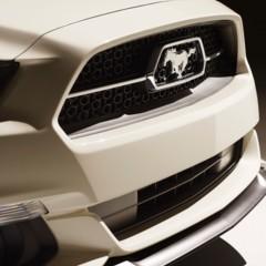 Foto 9 de 24 de la galería 2015-ford-mustang-50-year-limited-edition en Motorpasión