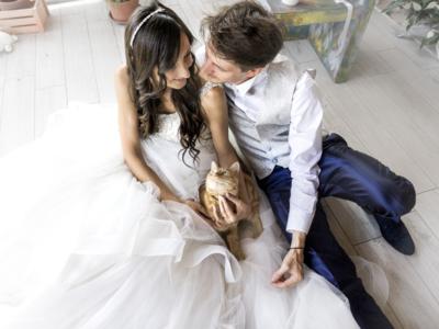 Esta fotógrafa de bodas hace sesiones para los amantes de los gatos y el resultado es encantador