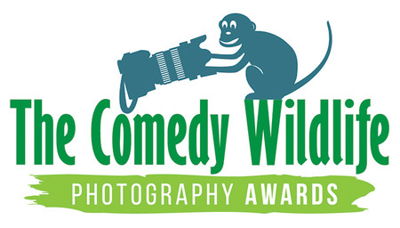 The Comedy Wildlife Logo