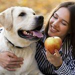 Qué cantidad de frutas, verduras y alimentos pueden comer los perros