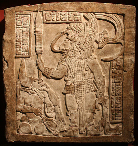 Maya11