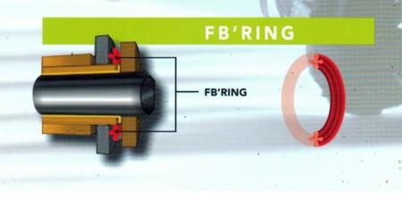 Gama de cadenas FB'Ring de IRIS Racing Chains