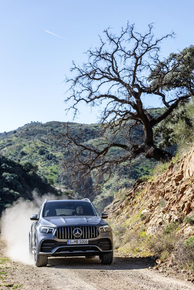 Foto de Mercedes-AMG GLE 53 4MATIC+ 2019 (13/44)