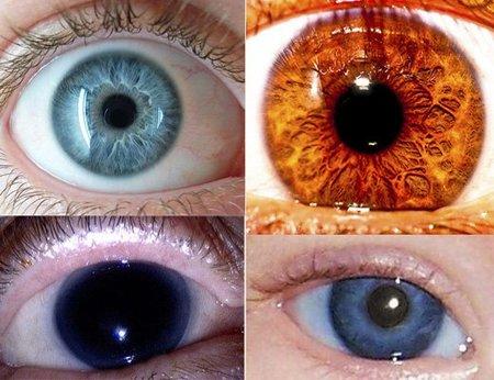 ¿De qué colores puede tener los ojos un ser humano?
