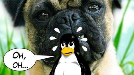 ¿El sistema operativo más inseguro del mundo? Damn Vulnerable Linux