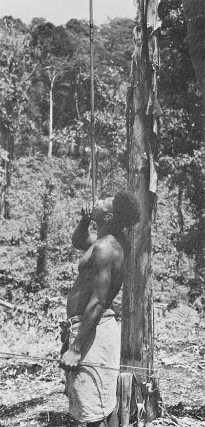 Kaulong Hunter Bamboo Blowgun