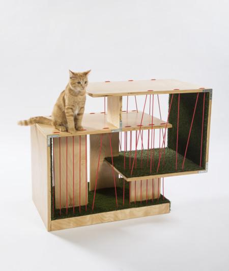 Cat Houses 6