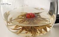 Probando las flores de té. Aroma y belleza en tu taza o tetera
