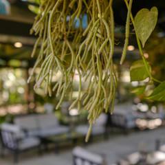 Foto 10 de 16 de la galería leica-cl en Xataka Foto