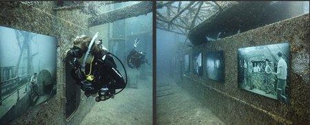 Exposición fotográfica submarina