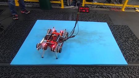 Google ha diseñado un robot con inteligencia artificial capaz de aprender a andar por sí solo