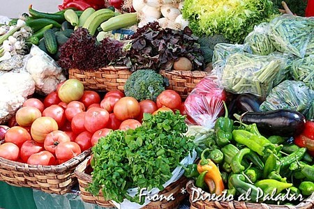 Verduras al sol