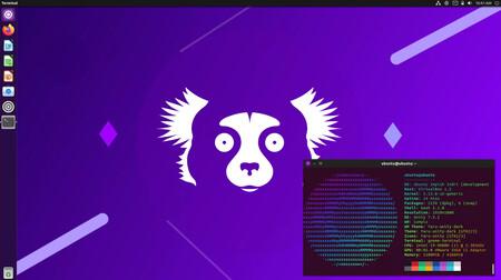 Hoy llega Ubuntu 21.10 con nuevas apps, nuevo tema, nuevo kernel y estrenando el escritorio de GNOME 40