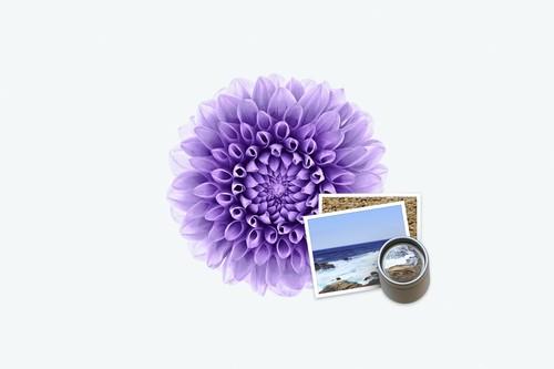 Cómo usar la paleta de cambio de tamaño y ajustes de imagen de Vista Previa en nuestro Mac