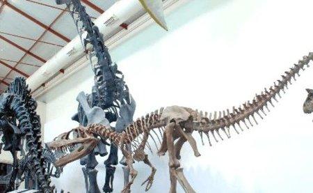 Al Museo de Ciencias Naturales de Madrid con los niños