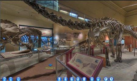 Tour virtual por el Museo Smithsonian de Historia Natural