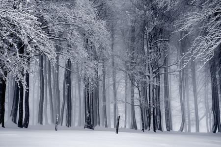 Proteger Equipo Frio Nieve 7