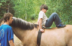Hipoterapia, terapia con caballos