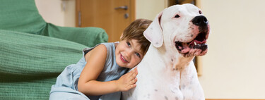 Abrazos entre perros y niños: lo que una educadora canina recomienda