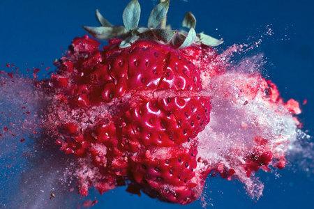 Las impactantes y explosivas fotos de comida de Alan Sailer