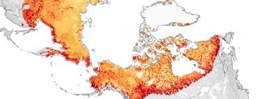 Un mapa para entender lo que la humanidad se juega con el deshielo del permafrost