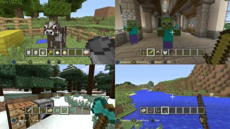 minecraft_(5).png