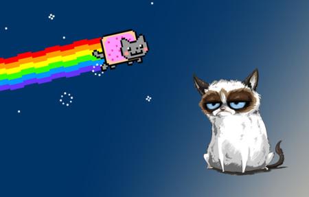 [Inocentada 2015] Los gatos son estrellas en Internet, aquí tenéis a los quince más famosos