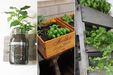 Tres originales formas de plantar vuestras hierbas aromáticas