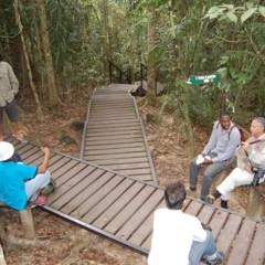 Foto 73 de 77 de la galería visitando-malasia-5o-y-6o-dias en Diario del Viajero