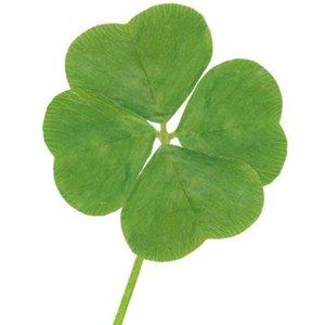 Tres factores que influyen en tu suerte, según Richard Wiseman