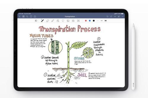 GoodNotes 5, la libreta de la era digital: App de la Semana