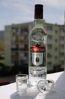 Interesantes bares para beber vodka en Moscú