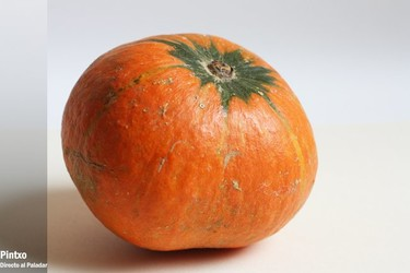La calabaza, ingredientes de temporada