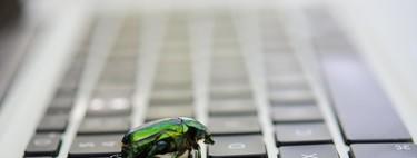 De profesión, cazarrecompensas de bugs informáticos